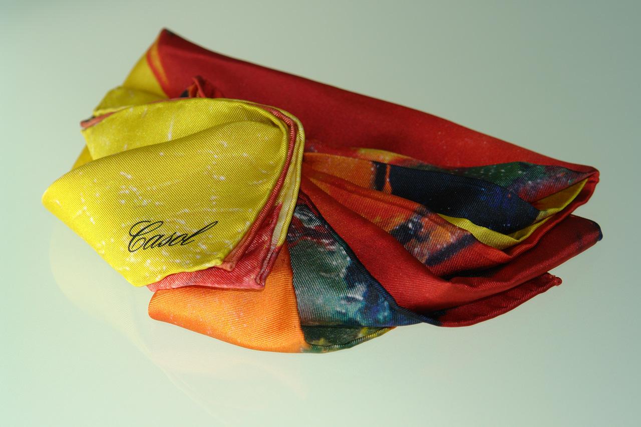 Maryse Casol silk scarf Hiver à Paris
